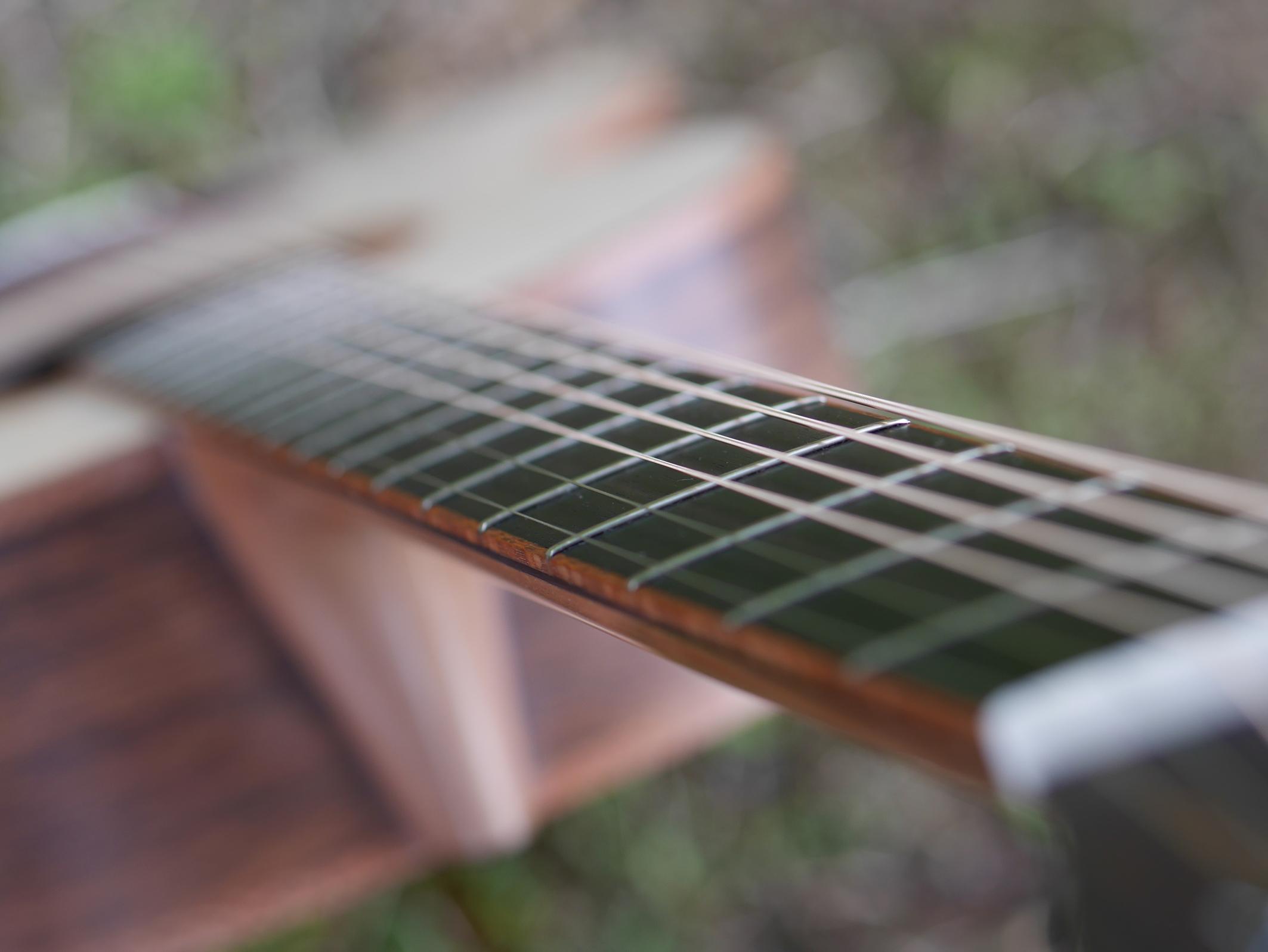 montgomery guitars, ebony fretboard, fanned frets