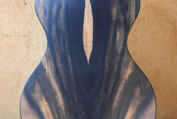parlour guitar, montgomery guitars, parlour guitar