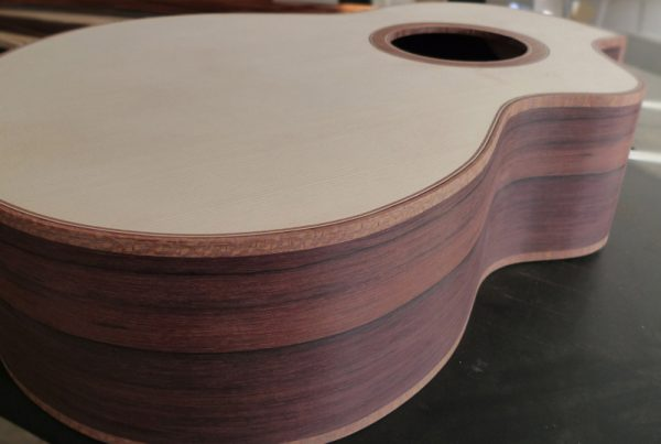 rosewood, spruce, cutaway, handmade, luthier, Andreas Montgomery