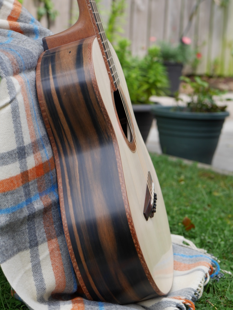 ebony guitar, montgomery guitars