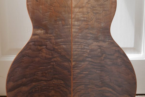 andreas montgomery, figured walnut, acoustic, Montgomery guitars, luthier