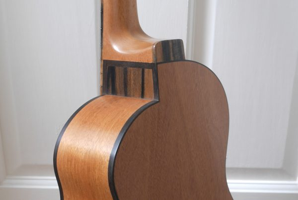 all mahogany, cutaway, luthier