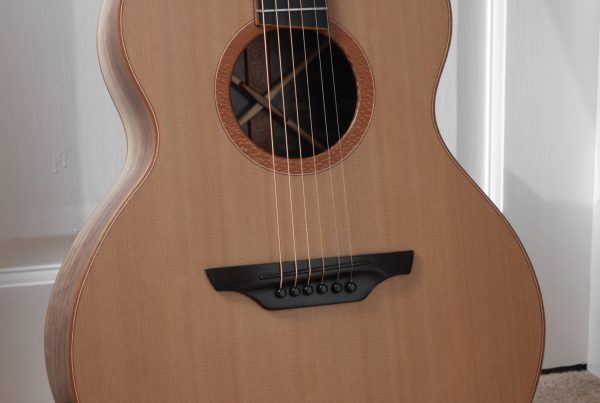 cedar soundboard, montgomery guitars, made in northern ireland, walnut, andreas montgomery