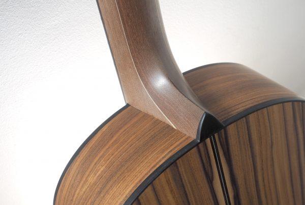 montgomery guitars, santos rosewood