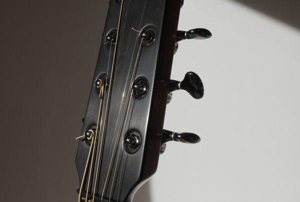 logo, headstock, montgomery guitars, ebony, gotoh 510