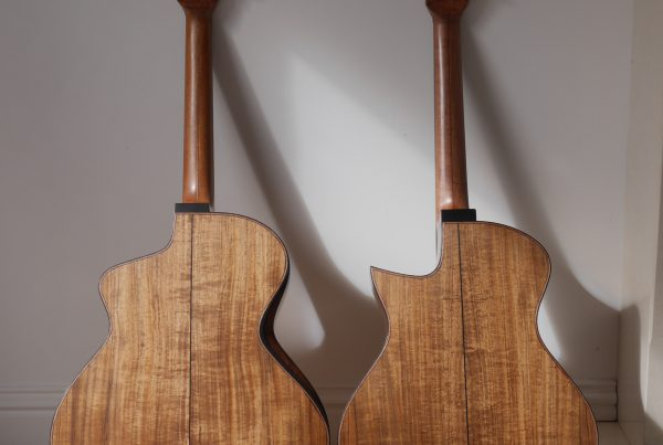tasmanian blackwood, jumbo, grand concert, acoustic guitar, luthier, montgomery guitars, andreas Montgomery